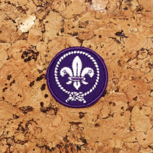 Insigne mondial scout