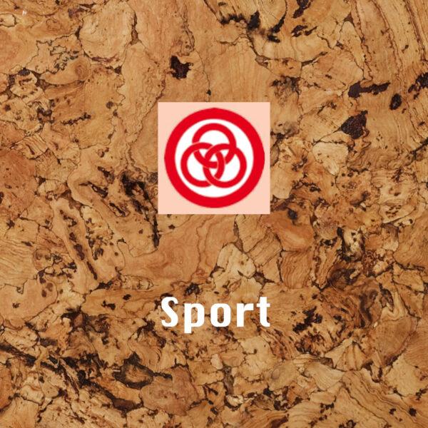 Aventure - Sport